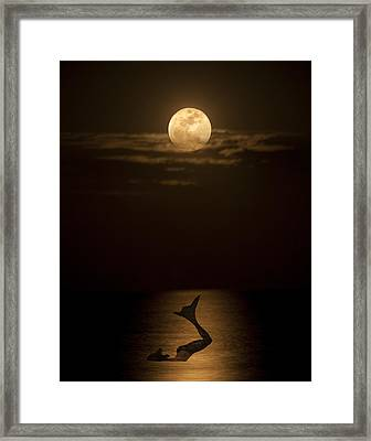 Mermaid's Moonsong Framed Print by Paula Porterfield-Izzo