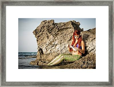Mermais Sighting 1 Framed Print
