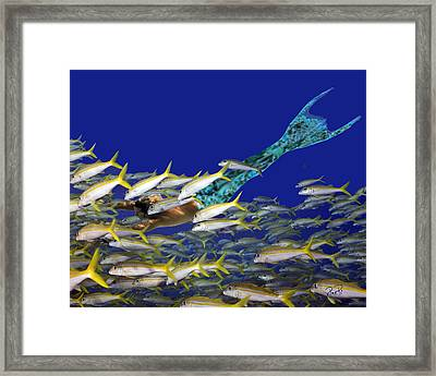 Merman Framed Print by Paula Porterfield-Izzo