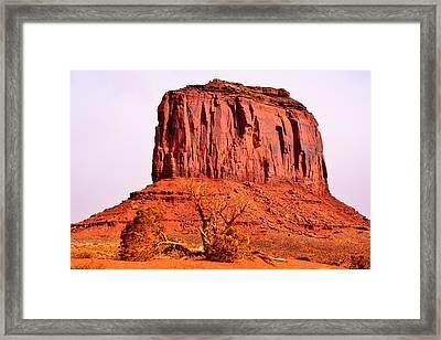 Merrick Butte Framed Print