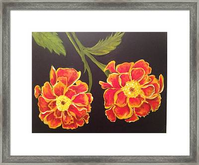 Merrigolds Framed Print by Brindha Naveen