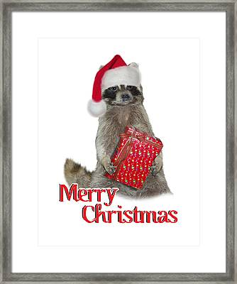 Merry Christmas -  Raccoon Framed Print by Gravityx9 Designs