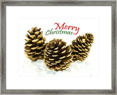 Merry Christmas Framed Print by Blink Images