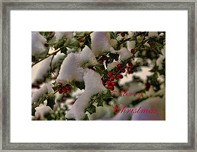 Merry Christmas Card Holly Framed Print
