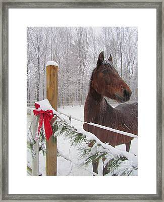Merry Christmas Framed Print by Elizabeth Dow