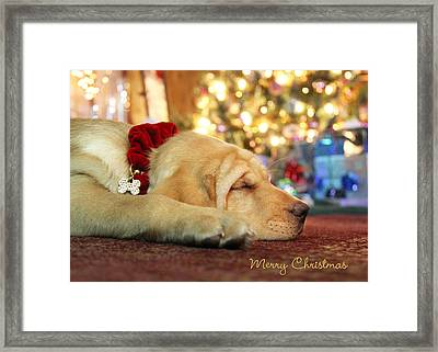 Merry Christmas From Lily Framed Print by Lori Deiter