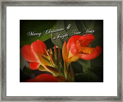 Merry Christmas Happy New Year Card - Red Canna Lily Framed Print