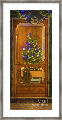Merry Christmas Framed Print by Mitch Shindelbower