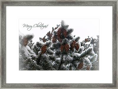 Merry Christmas Pinecones Framed Print by Michelle Frizzell-Thompson