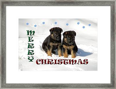 Merry Christmas Puppies Framed Print
