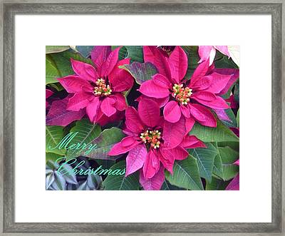 Merry Christmas To You Framed Print by Lingfai Leung