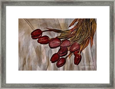 Mes Tulipes Framed Print by Aimelle