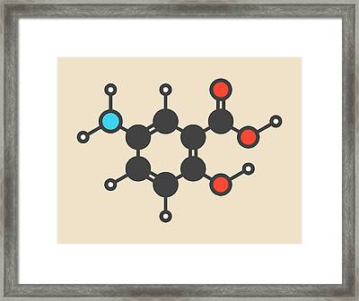 Mesalazine Molecule Framed Print by Molekuul