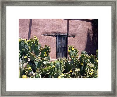 Mesilla Bouquet Framed Print by Kurt Van Wagner