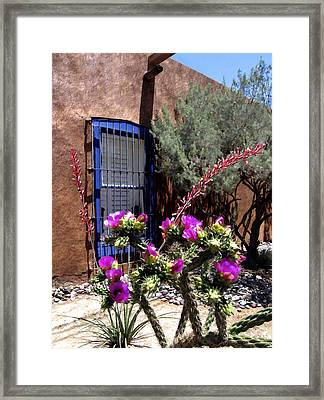 Mesilla Cholla Framed Print by Kurt Van Wagner