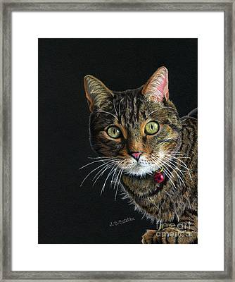 Mesmer Eyes Framed Print by Sarah Batalka