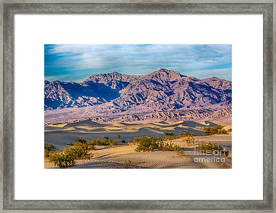 Mesquite Dunes And Mountains Framed Print