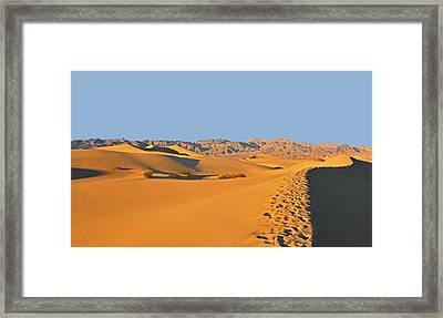 Framed Print featuring the photograph Mesquite Flat Sand Dunes - Death Valley by Dana Sohr