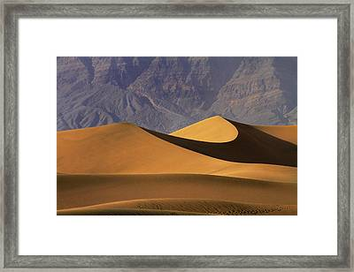 Mesquite Flat Sand Dunes And Grapevine Framed Print by David Wall