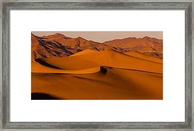 Mesquite Framed Print