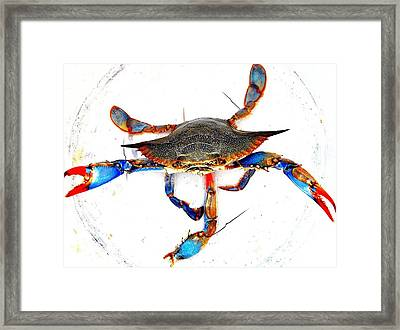Mess With Me............sold. Framed Print