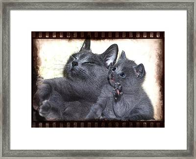 Mess With My Ma I'll Scratch Your Eyes Out Framed Print