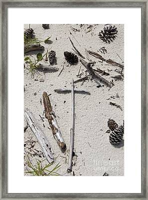 Message In The Sand Framed Print by Benanne Stiens