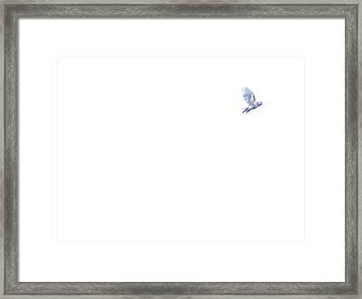 Message Framed Print by Mark C Ettinger