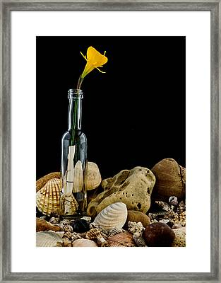 Message Of Love II Framed Print by Marco Oliveira