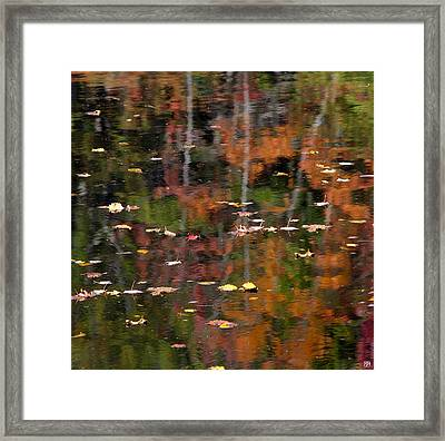 Messalonskee Reflection 1 Framed Print