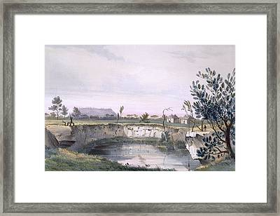 Messrs Arthurs Sheep Station, With One Framed Print by George French Angas