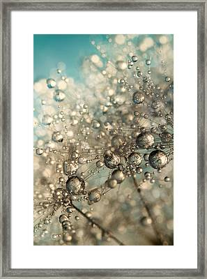 Framed Print featuring the photograph Metal Blue Dandy Sparkle by Sharon Johnstone
