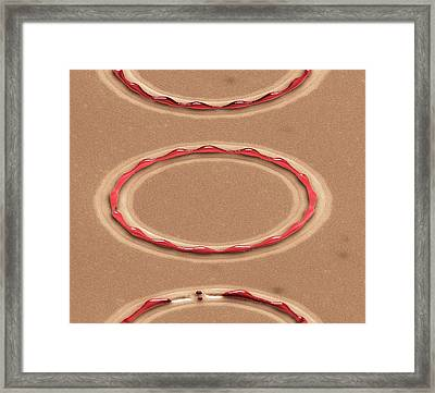 Metal Dewetting Framed Print by Center For Nanophase Materials Sciences, Ornl