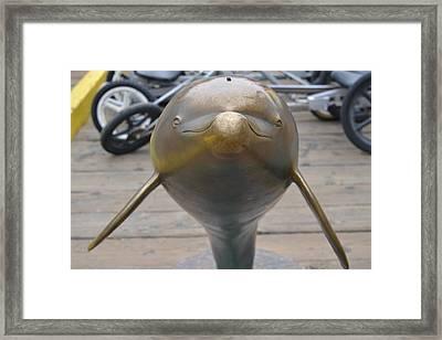 Metal Dolphin Framed Print by Kiros Berhane
