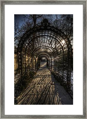 Metal Garden Framed Print by Nathan Wright