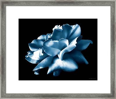 Metallic Blue Rose Flower Framed Print by Jennie Marie Schell
