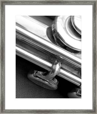 Metallic  Framed Print by Lisa Phillips