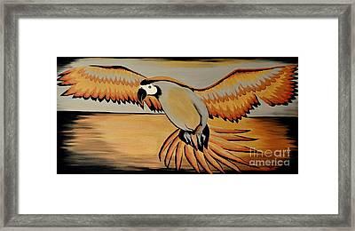 Metallic Macaw Framed Print