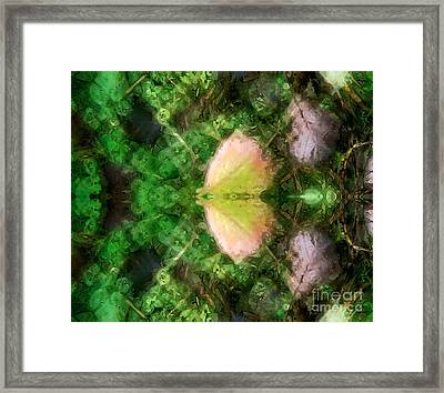 Metamorphosis 1  Framed Print