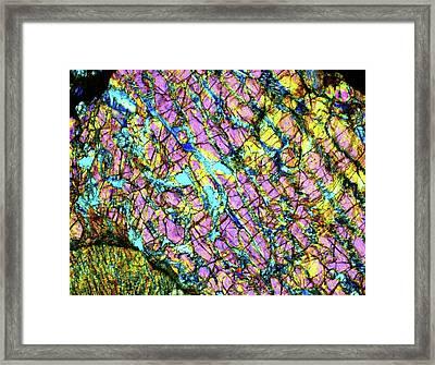 Meteorite Jah 055 L4-5 Framed Print by Alfred Pasieka