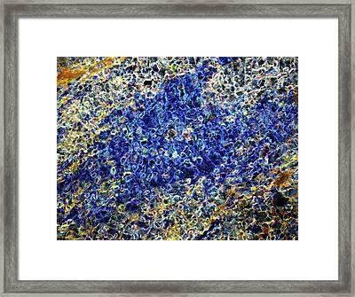 Meteorite Nwa 6435 Framed Print by Alfred Pasieka