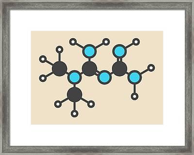 Metformin Diabetes Drug Molecule Framed Print by Molekuul