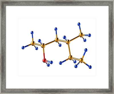 Methylhexanamine Molecule Framed Print