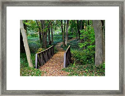 Metroparks Pathway Framed Print by Frozen in Time Fine Art Photography