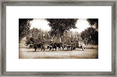 Mexican Carreta, Chihuahua, Carriages & Coaches Framed Print by Litz Collection