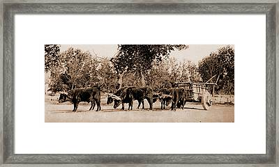 Mexican Carreta, Chihuahua, Jackson, William Henry Framed Print by Litz Collection