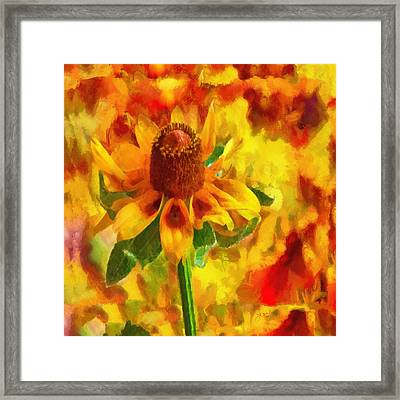 Mexican Hat Dance Framed Print