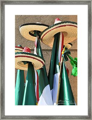 Mexican Independence Day - Photograph By David Perry Lawrence Framed Print by David Perry Lawrence