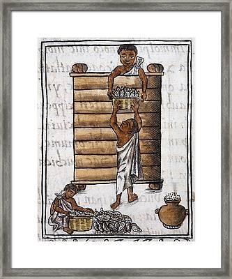 Mexico Aztec Storage Framed Print