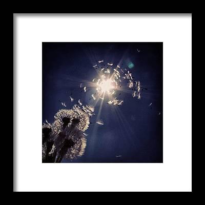 Romantic Framed Prints